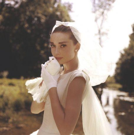 Audrey-dove
