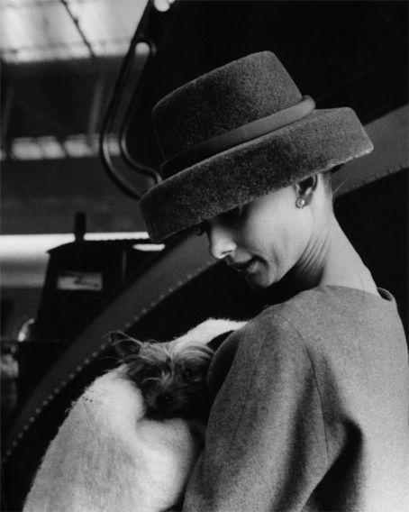 Audrey - cute hat